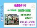 岩倉イベント情報0315